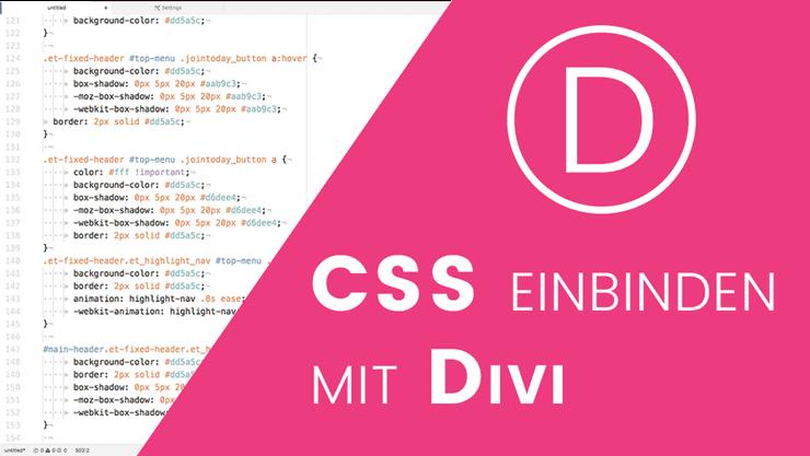 CSS Code einbinden mit dem Divi Theme