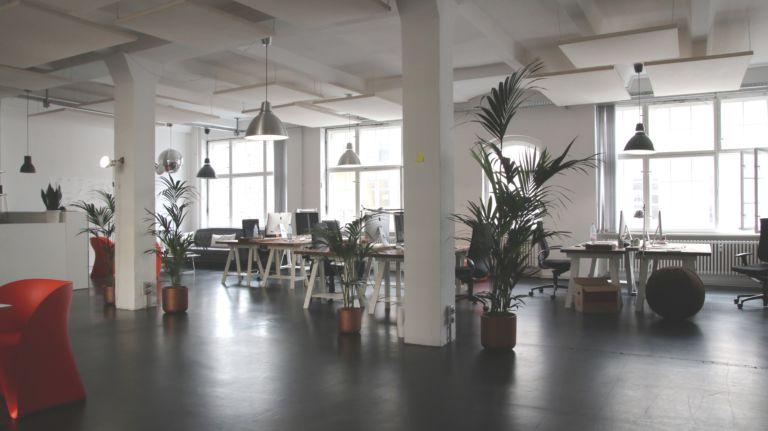 Webdesign für Webseite in Leverkusen